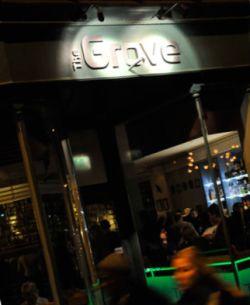 The Dancing Grove Ashley Cross